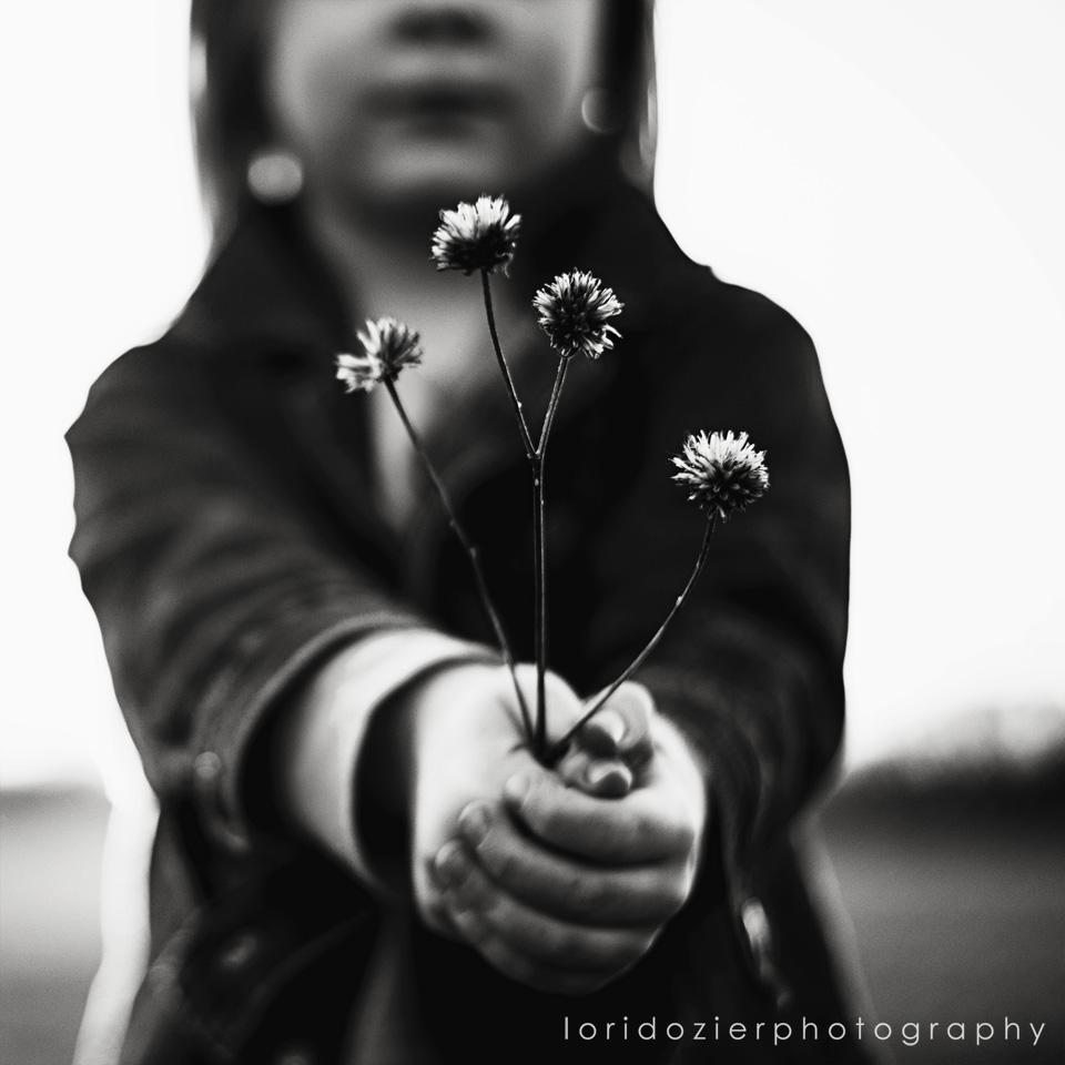 www.loridozierphotpgraphy.com