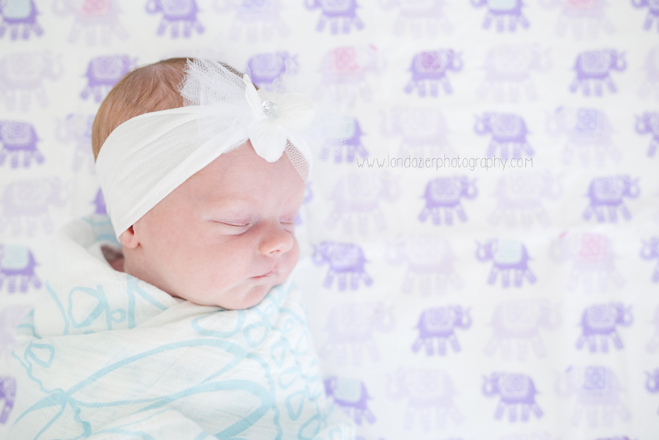 chanhassen lifestyle newborn photographer _013