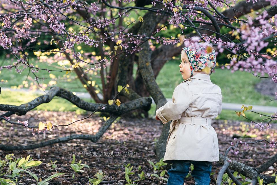 MN Landscape Arboretum Photographer