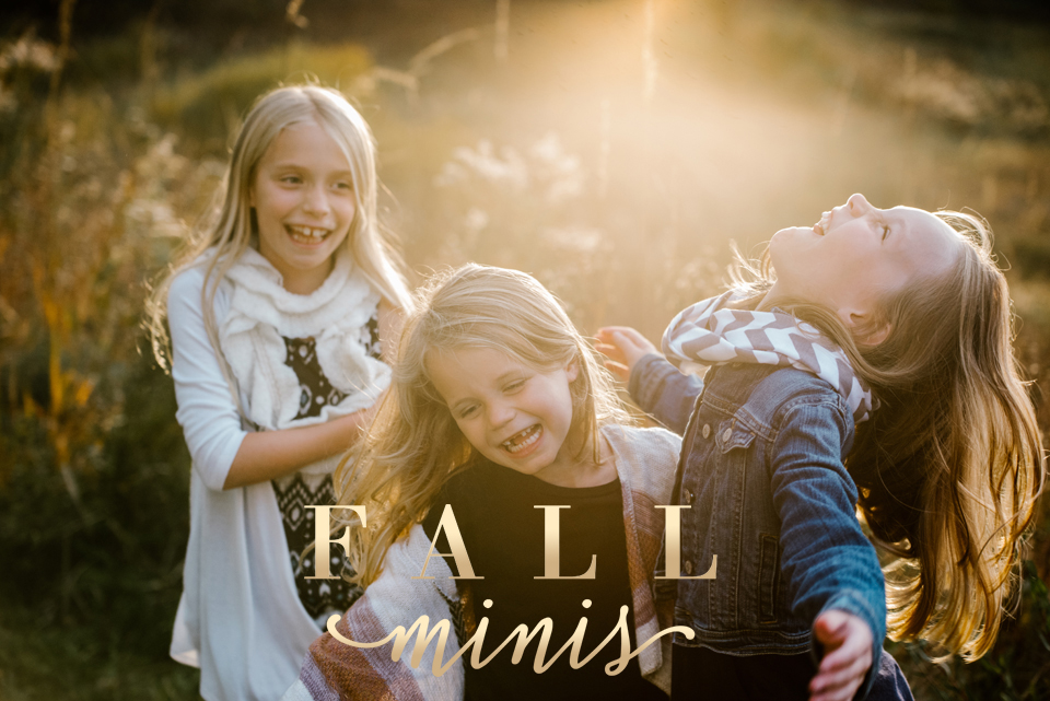 twin cities mini sessions